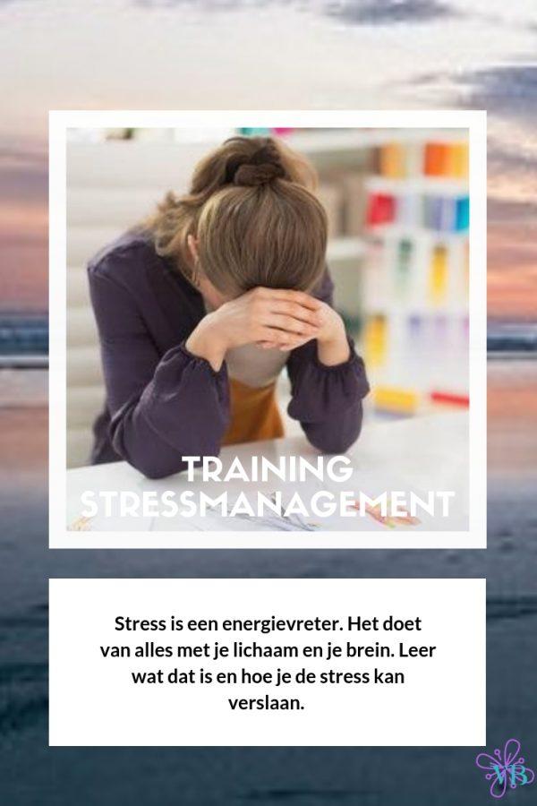 Stressmanagement online training