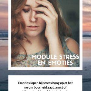 Emoties en stress