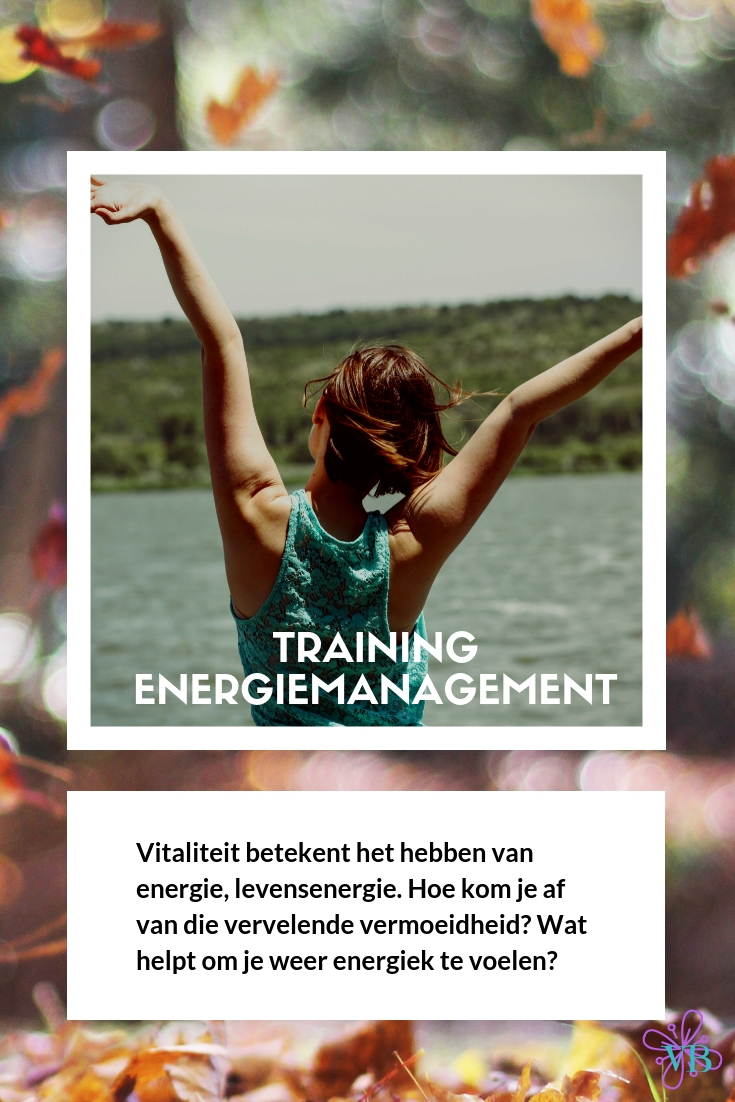 Cursus energiemanagement