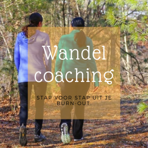 Burn-out - wandelcoaching stap voor stap uit je burn-out